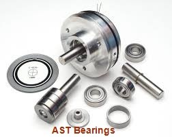 AST AST40 11080 plain bearings