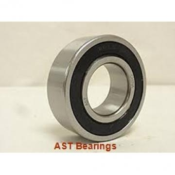 AST GEZ304ES plain bearings